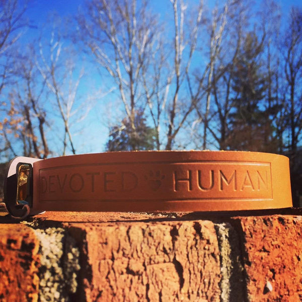 Devoted Human Leather Dog Collar with Bottle Opener - Devoted Human