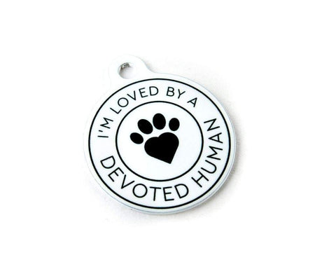 I'm Loved by a Devoted Human - cat ID tag - Devoted Human