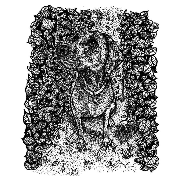 Plott Hound Print with Black Mat - Devoted Human