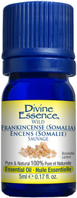 Divine Essence - Wild Frankincense (Somalia) Essential Oil - The Niche Naturals