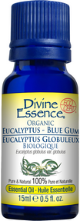 Divine Essence - Eucalyptus Blue Gum Organic Essential Oil - The Niche Naturals