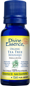 Divine Essence - Tea Tree Essential Oil - The Niche Naturals