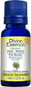Divine Essence - White Pine Organic Essential Oil - The Niche Naturals