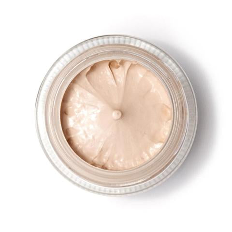 Elate Full Tint Foundation - Ivory - The Niche Naturals