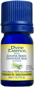Divine Essence - Organic Juniper Berry Essential Oil - The Niche Naturals