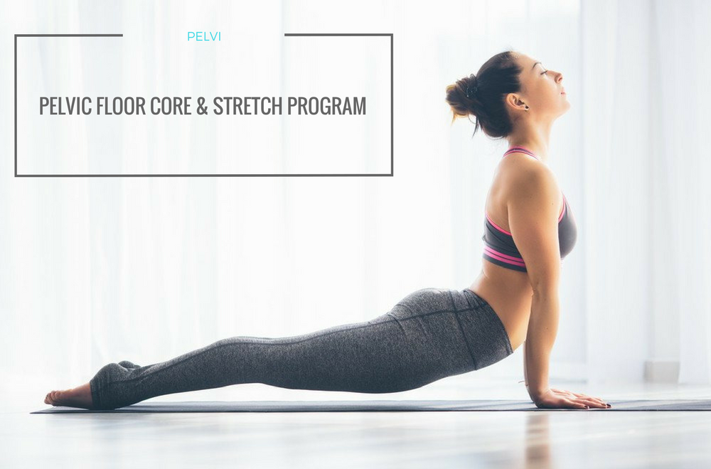 Pelvic Floor Fit Core Program