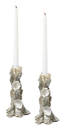 Fennco Styles Home Decor Accent 8 Inches Oyster Candle Holders, Set of 2