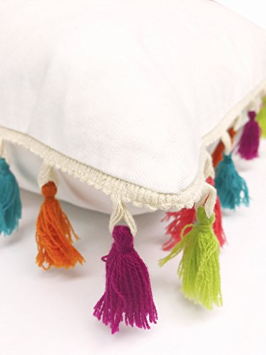 Fennco Styles Handmade Multicolored Tassel Design Pillow - 2 Sizes - Sold per one