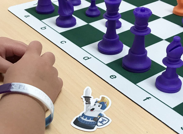 Silicone chess pieces, colorful chess wristbands, and sticker
