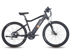 Momentum II Electric Bike
