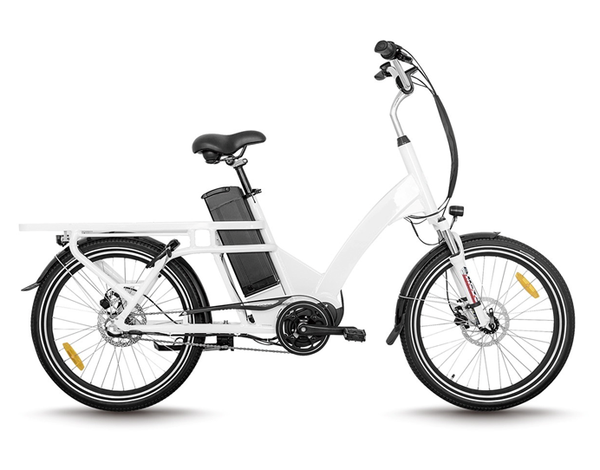 Electric Delivery Bike