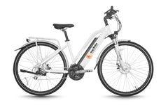 Long Range Electric Bike - Freeway II | Easy Motion