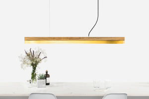 C Series Brass Pendant by Gantlights