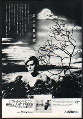The David Sylvian Collection