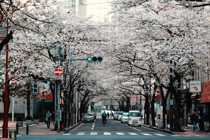 VACAY GUIDE: JAPAN WITH SARAH DEER