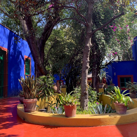 Frida Khalo's House, Mexico