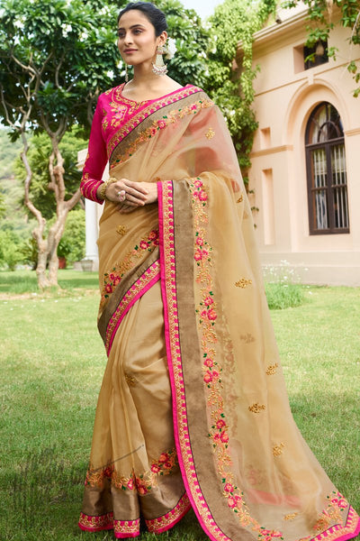 Chiku and Rani Pink Nylone Saree