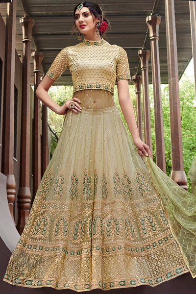 Pale Sage Green Net Anarkali Suit