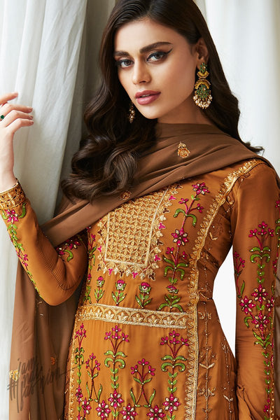 Rust and Brown Georgette Straight Suit