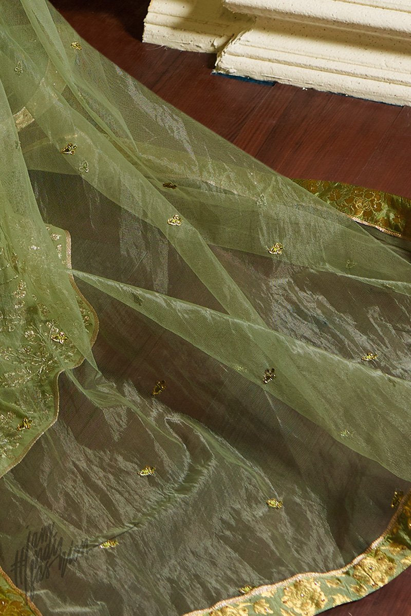 Pickle Green Georgette Sharara Suit