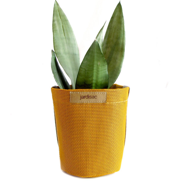 yellow plant pots small containers boxes to grow flowers