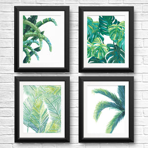 Leaf Wall Art Prints | Fern, Palm, Monstera, Banana