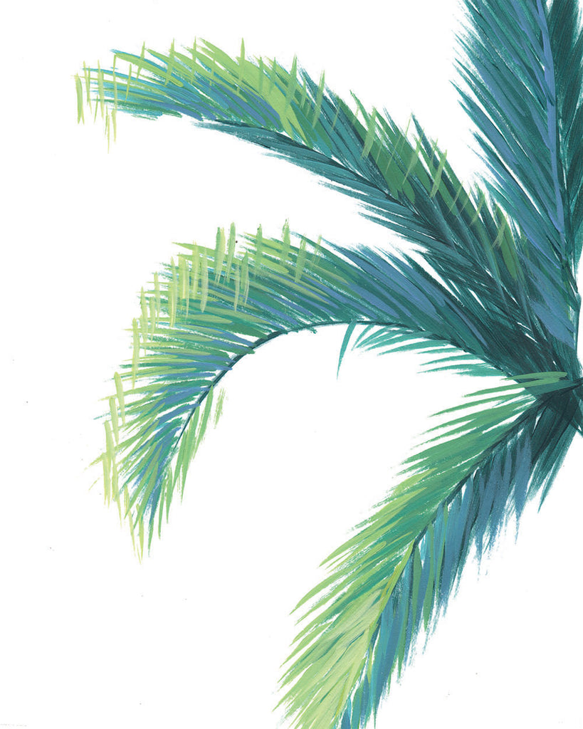 Palm Tree Unframed | Fine Art Print