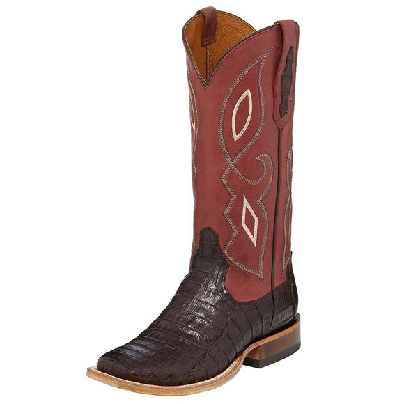 TONY LAMA WOMEN'S LEIGHTON CAIMAN CROCODILE BROWN