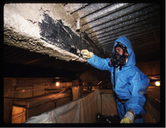 Asbestos/Abatement