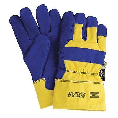 (12 Pairs) Polar Thinsulate Insulated Winter Work Gloves (L)