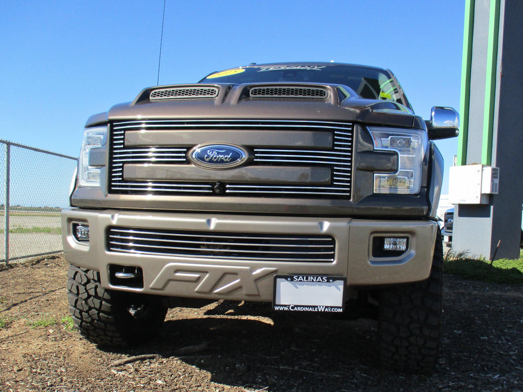 Removable License Plate Bracket for 2015 Ford F-150 FTX - Main