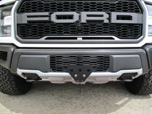 Removable License Plate Bracket for 2017-2019 Ford F150 SVT Raptor - Main