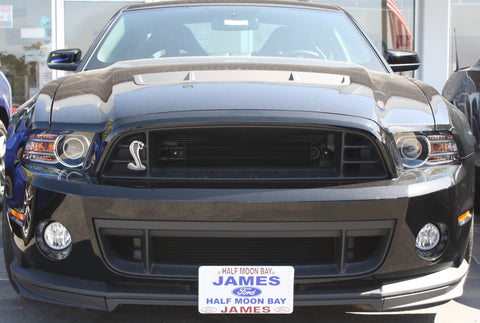 Removable, No Drill Front License Plate Holder Bracket Ford Mustang Shelby GT500