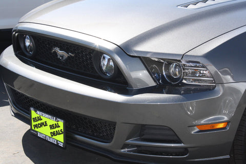 Image of Removable License Plate Bracket for 2013-2014 Ford Mustang GT/V6 - Installed 3