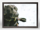 FRAMED DOG ART
