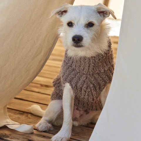 COZYCHIC DOG SWEATER