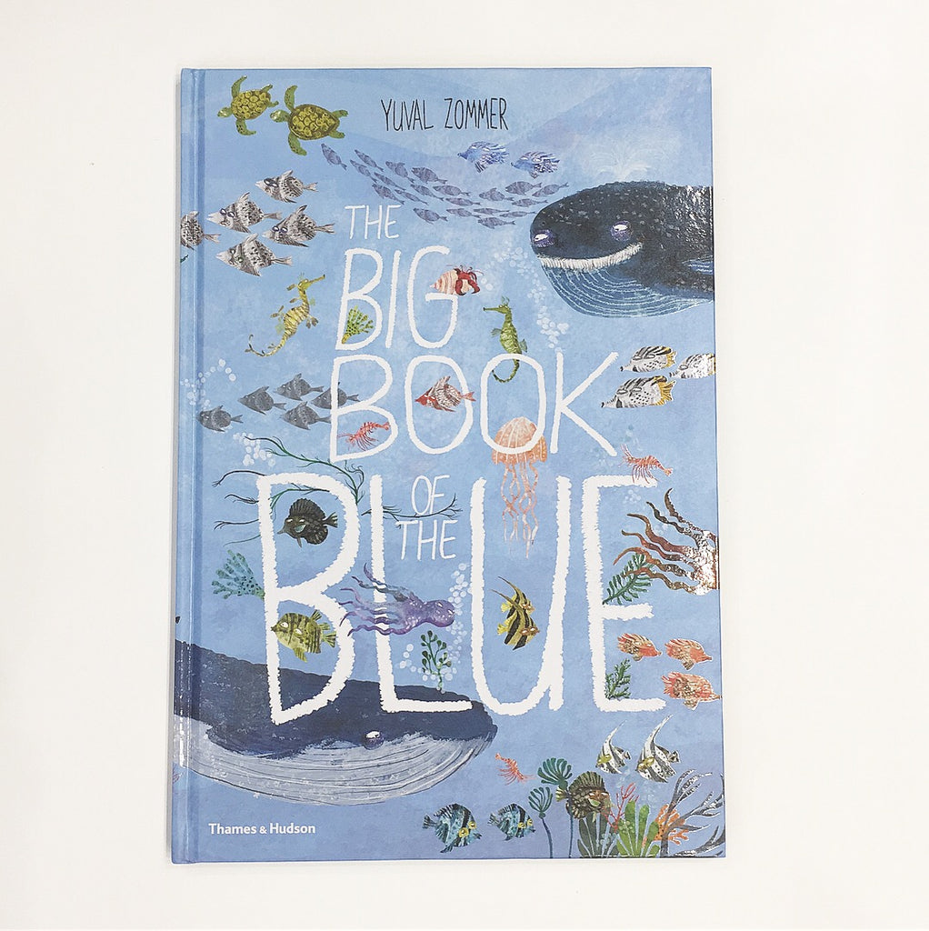 BIG BOOK OF BLUE