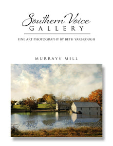Artwork - Southern Voice Gallery - Farm and Field - Murrays Mill Fine Art Print