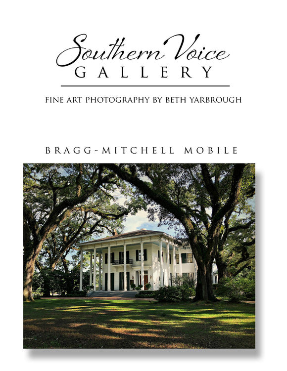 Artwork - Southern Voice Gallery - Iconic Houses - Bragg-Mitchell Fine Art Print