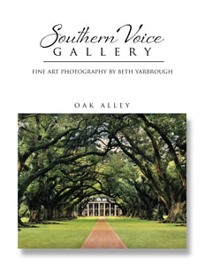 Artwork - Southern Voice Gallery - Iconic Houses - Oak Alley Fine Art Print