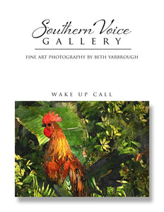 Artwork - Southern Voice Gallery - Key West - Rooster Fine Art Print