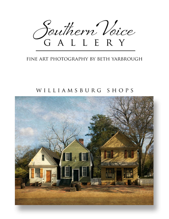 Artwork - Southern Voice Gallery - Williamsburg - Row of Shops Fine Art Print