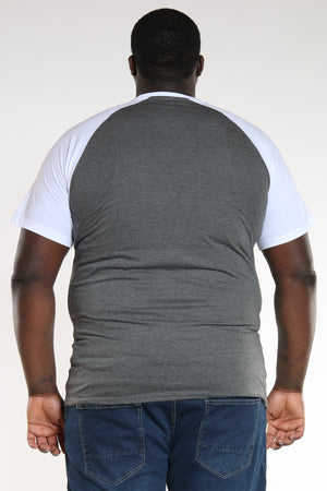Men's Plus Size Big & Tall Raglan Sleeve Tee - White Grey