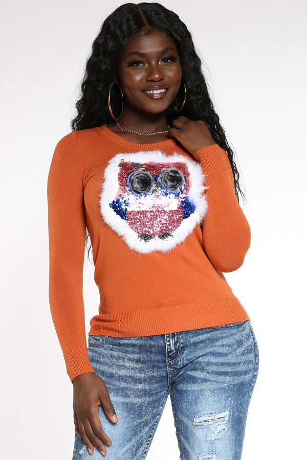 Women's Owl Seqins Fur Sweater - Rust-VIM.COM