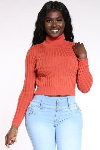 Women's Ribbed Turtle Neck Sweater - Rust-VIM.COM