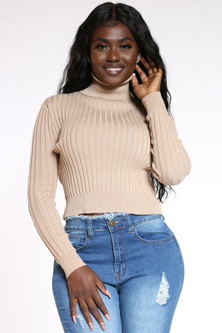 Women's Ribbed Turtle Neck Sweater - Beige-VIM.COM