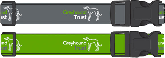 Greyhound Trust House Collar