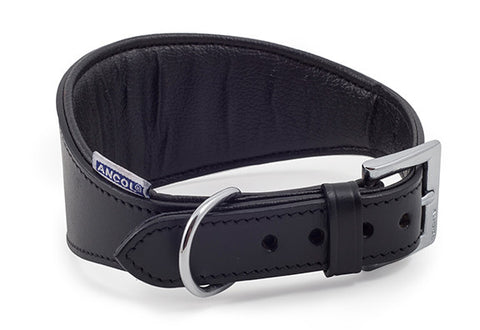 ANCOL Padded Greyhound/Whippet Collar