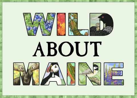 Wild Maine Greeting Card (Blank)