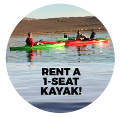 Rent a 1-Seat Kayak!